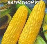 Семена кукурузы Багратион F1 20г