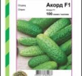 Семена огурца Аккорд 100шт (Bejo Голландия)
