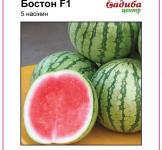 Семена арбуза Бостон F1 5шт (Nunhems Голландия)