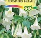 Семена Бругмансия Аромагия белая 3шт (Гавриш)