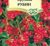 Семена Брусника Рубин 20шт (Гавриш)