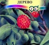 Семена бруссонетии бумажного дерева ТМ «Гавриш» (3шт)