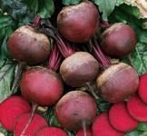 Семена свеклы столовой Красный шар 0,5кг (Roltico Польша)
