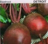 Семена свеклы столовой Детройт 15г (Коуел Италия)