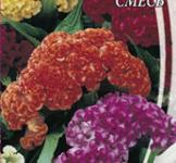 Семена Целозия гребенчатая смесь 0,2г