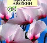Семена Цикламен Персидский Арлекин 3шт