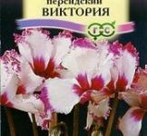 Семена  Цикламен  Персидский  Виктория 3шт
