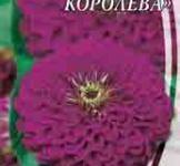 Семена Цинния Пурпурная королева 0,5г