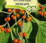 Семена древогубца круглолистного ТМ «Гавриш» (0,2г)