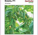 Семена огурца Эколь F1 50шт (Syngenta Голландия)