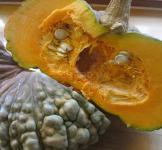 Семена Тыквы Марина ди Кьоджа 10шт (Коуел Италия)