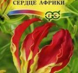 Семена  Глориоза  Сердце  Африки  3шт