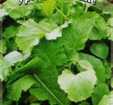 Семена горчицы листовой Прима (серия Урожай на окне) ТМ «Гавриш» (1г)