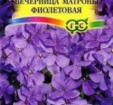 Семена Хеспериса Вечерница Матроны Фиолетовая 0,1г