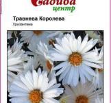 Семена Хризантемы Майская Королева 0,1г
