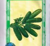 Семена огурца Регал F1 100шт (Clause Франция)