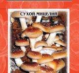 Семена сухой мицелий грибов Шиитаке императорский 10г
