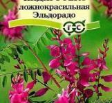 Семена Индигофера Эльдорадо 0,2г