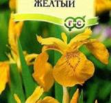 Семена Ирис болотный желтый 3шт (Гавриш)