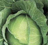 Семена капусты белокочанной Июньская (рс) 1г
