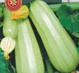 Семена кабачков Алия F1 5шт  (ранний)