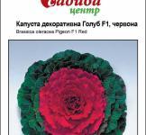 Семена Капусты декоративной Голуб F1 красная 10шт (Satimex Германия)