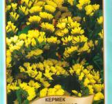 Семена Кермек насыщенно-желтый 0,2г (Legutko Польша)