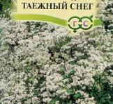 Семена клематиса манчжурского Таежный снег  (0,05г)