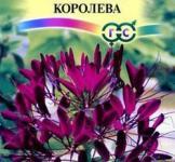 Семена Клеома Вишневая королева 0,3г