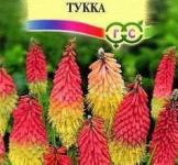 Семена Книфофия Тукка 0,1г (Гавриш)