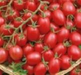 Семена томата Князь буржуа 0,2г