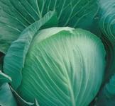 Семена капусты белокочанной Колобок F1 0,3г