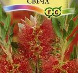 Семена краснотычинника Бенгальская свеча ТМ «Гавриш» (0,05г)