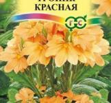 Семена Кроссандра Тропик красная 3шт (Гавриш)