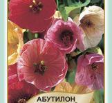 Семена Абутилон гибридный смесь 0,1г