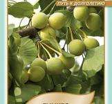 Семена Гинкго Двулопастный 5шт (Legutko Польша)