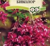 Семена Леспедеца Биколор 5 шт
