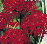 Семена  Лихнис Халцедонский Красный 0,3г