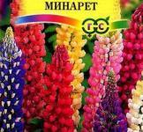 Семена Люпин Минарет смесь 0,5г (Гавриш)