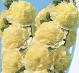 Семена Мальва махровая желтая 0,3г