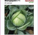 Семена капусты Мандарин F1 20шт (Clause Франция)