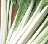 Семена мангольда Лукуллус 1г