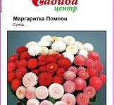 Семена Маргаритка Помпон, смесь 0,05г (Hem Zaden Голландия)