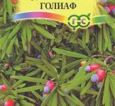 Семена Ногоплодник Голиаф 3шт