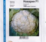 Семена капусты цветной Новария F1 100шт (Enza Zaden Нидерланды)