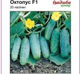 Семена огурца Октопус F1 20шт (Syngenta Голландия)