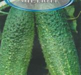 Семена огурца Отелло F1 100шт ( ТМ Гавриш)