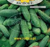 Семена гранулированные огурец  Рацибор F1 50 шт (Roltico Польша)