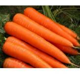 Семена моркови Осенняя королева 0,5кг