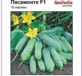 Семена огурца Пасамонте F1 50шт (Syngenta Голландия)